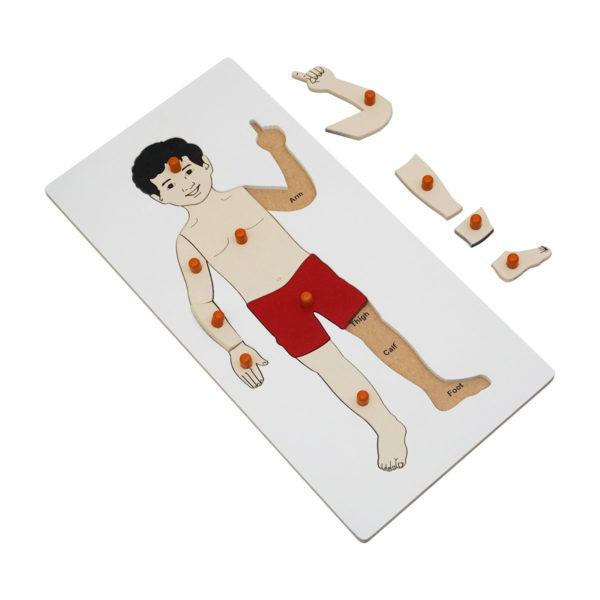Montessori Premium Boy Puzzle Image2