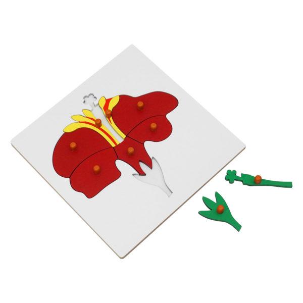 Montessori Premium Flower Puzzle Image2