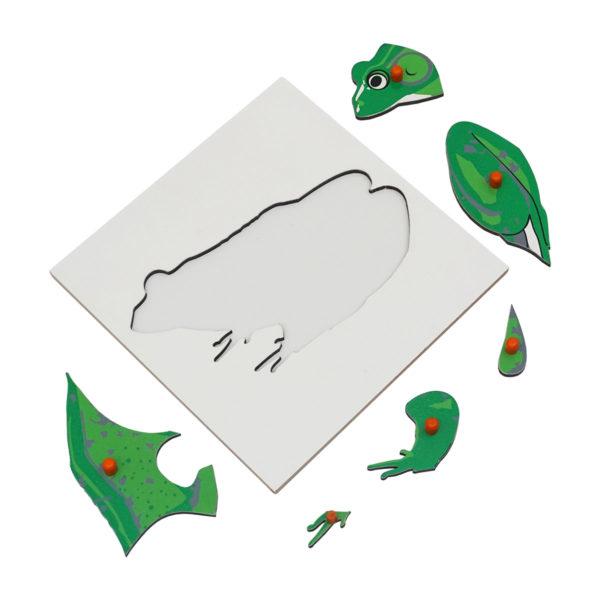 Montessori Premium Frog Puzzle Image3