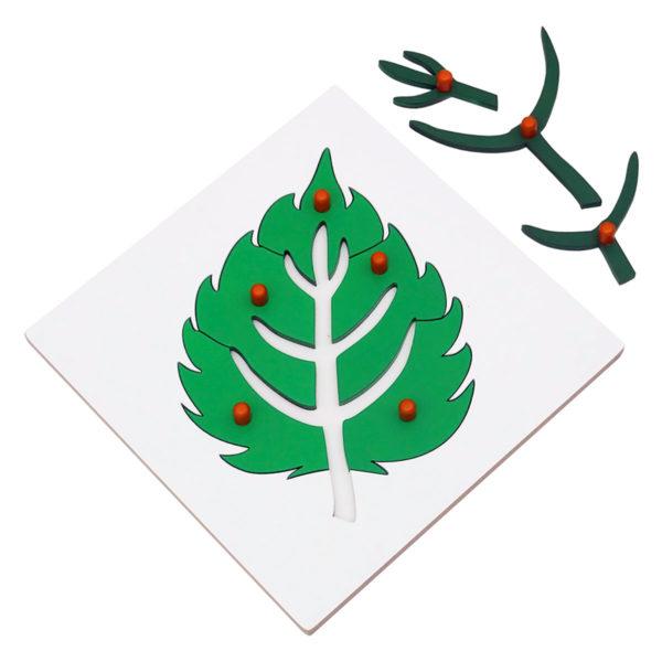 Montessori Premium Leaf Puzzle Image2