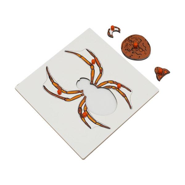 Montessori Premium Spider Puzzle Image2