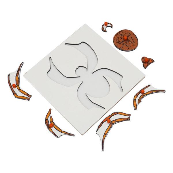 Montessori Premium Spider Puzzle Image3